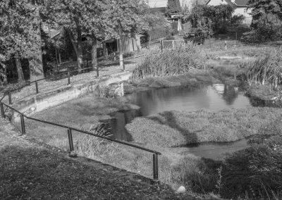 Dorf- und Löschteich